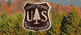 forest service logo over trees