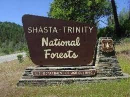 shasta trinity forest service sign