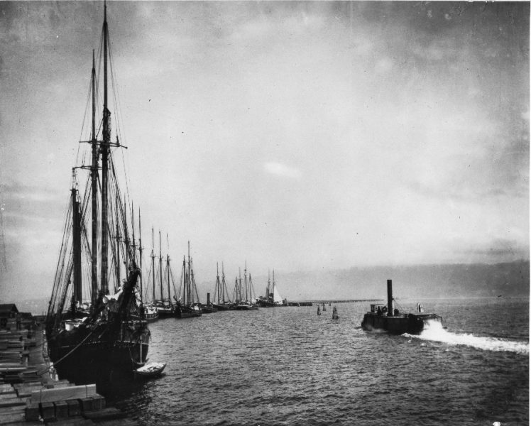 arcata wharf 1908
