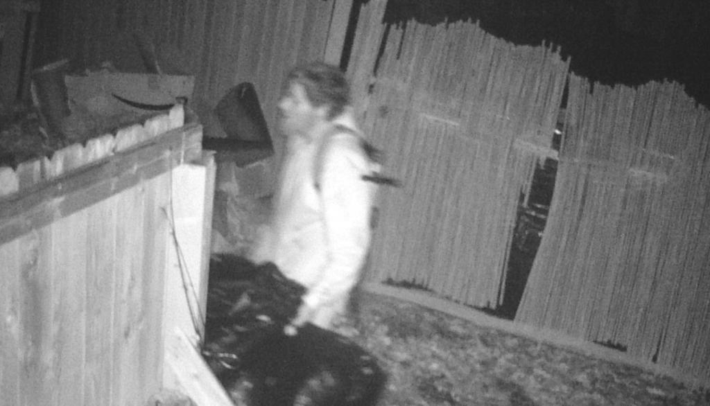 burglary suspect carrying bags