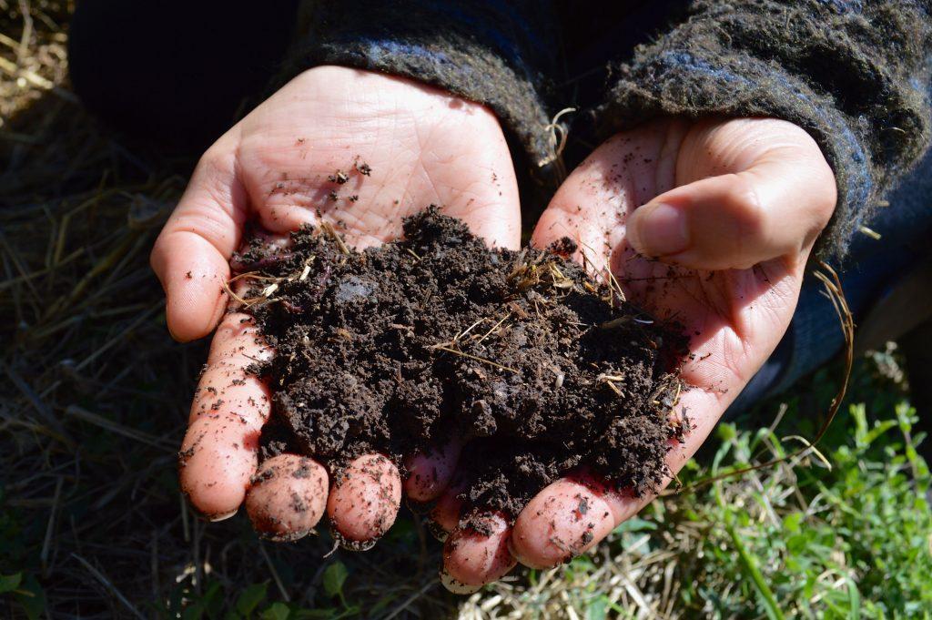 Hands in dirt Cannabis garden Emily Hobelmann cannabis garden
