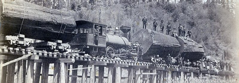 albion log train