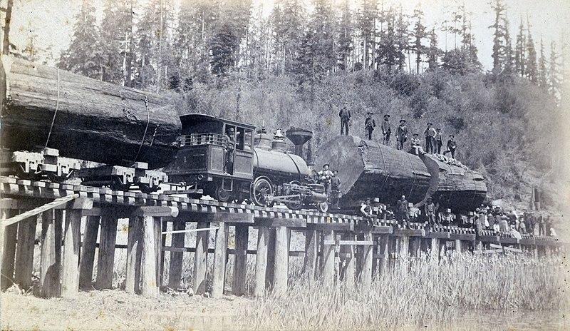 Log train near Albion