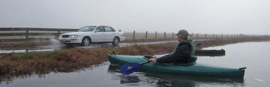 kayaking in loleta