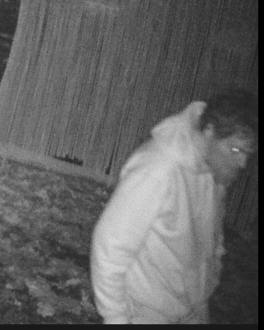 The burglars both appeared to be white males with facial hair.