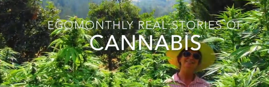 Screenshot from A new series from Ecomonthly looks at cannabis issues in our region.
