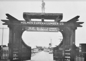 old picture called Gate Entrance