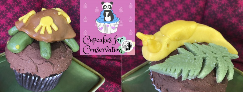 Cupcakes for Conservation 2020