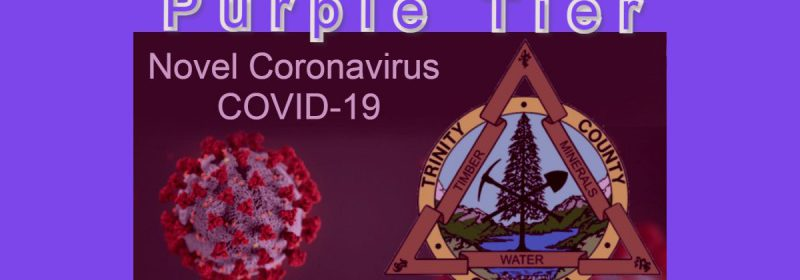 Purple Tier Trinity County covid