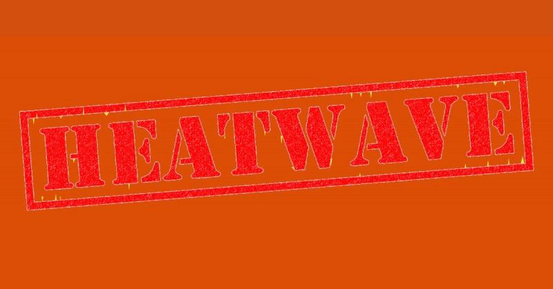 Heatwave, hot temperature feature