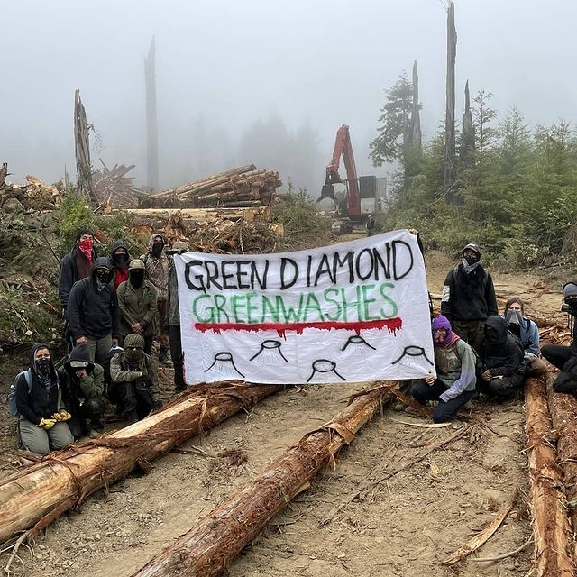 Photo from earlier this week posted on the Instagram account of Redwood Forest Defense.