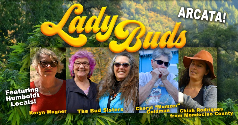 Lady Buds.