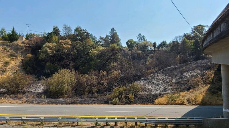 Cal Fire image of the fire near Garberville